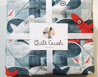 Vintage Airplanes Quilt