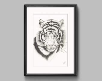 For The Hunt - Siberian Tiger Pencil Print, Tiger Art Decor Prints, Tiger Wall Art, Tiger Drawing, Tiger Giclee Print, Wildlife Print