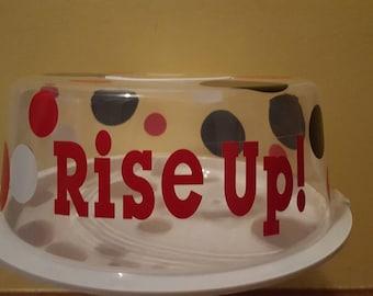 Atlanta Falcons cake saver