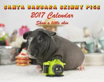 2017 Calendar - Skinny Guinea Pigs