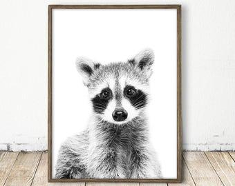 Baby Raccoon Print, Raccoon Print, Forest Animal Print, Woodlands Decor, Nursery Wall Art, Raccoon Photo, Woodlands Animal Art, Baby Animal
