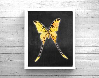 Yellow Butterfly Art - Printable Butterfly, 3D Butterfly Art, Butterfly Painting, Butterfly Poster, Mariposa Arte, Butterfly Wall Art