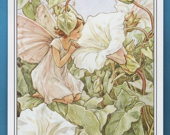 The White Bindweed Flower Fairy,  Cicely Mary Barker Flower Fairy Book Plate Print