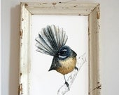 New Zealand native bird fantail illustrated Large print, print from original watercolor and ink painting artwork, Wild life wall art