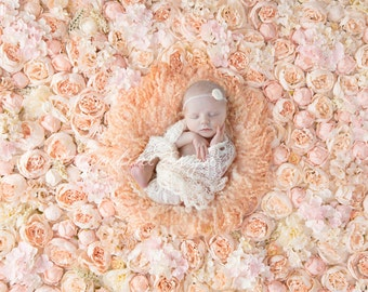 Digital background newborn photography, Peony Peach Flower Wall
