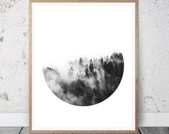 Forest Print, Forest Photography, Forest Wall Art, Forest Art, Forest Wall Prints, Nature Print, Nature Wall Art, Nature Decor, Nature