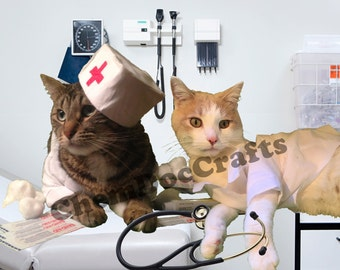 Cat Get Well Soon Card - Cats in Costumes
