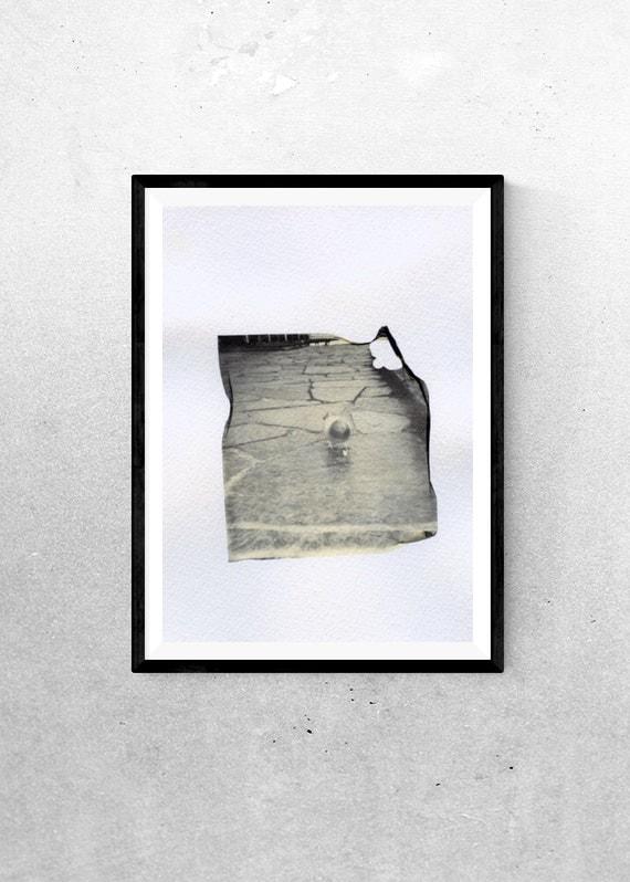 Bird walk - Polaroid Emulsion Lift