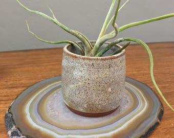 Pottery Plant Holder - Vintage Speckled Stoneware