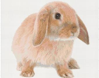 Modern Cross Stitch PDF Pattern: Floppy-Eared Bunny