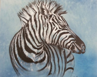 Zebra on a blue background