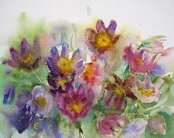 Pasque Flowers/Pasque Flowers Watercolour