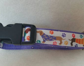 Whimsical adjustable collar with cute dachshunds wearing shirts.  Purple background. Medium sized.