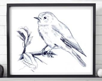 Bird drawing, Bird sketch, Sketch download, Printable bird drawing, Printable art, black and white, Home decor, Pencil sketch, Bird