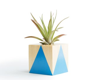 Air Planter, FREE SHIPPING, 7 Colors, Indoor Plant, Airplanter Gifts for Him, Air Plants, Blue Planter, Best Friend Gift, Wood Planter