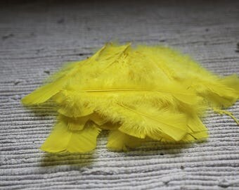 Decorative feathers 5 gr (20-24 feathers). Yellow feathers. Feathers for dream catcher. For dolls. For plush toys.