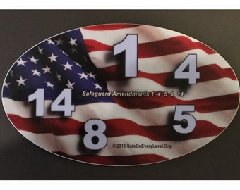 FIVE PACK Sticker Civil Rights Bumper Constitutional Amendments Liberties Political Action Human Rights