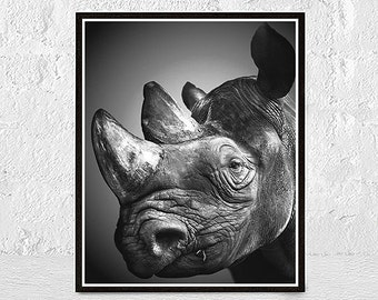 Rhino print art, safari art print, rhino print, kids room art, zoo art, kids animal art, rhino wall decor, african animal, african wildlife
