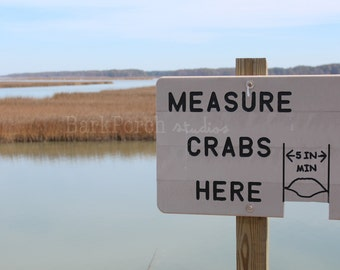 Measure Crabs Here; Assateague Island; Chincoteague Island; Virginia; Maryland; Shore; Nature Photography; Wall art; poster; beach house
