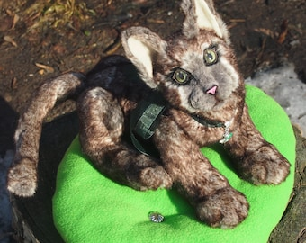 Cat Miv-Sher Teddy realistic style OOAK