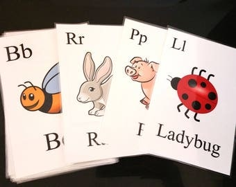 Variety Pack Flashcards Digital Download
