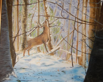 Deer in a forest Glade
