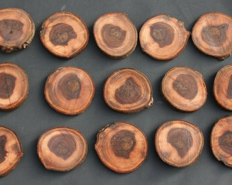 15 assorted wood slices, slices of rustic wood, for the decoration of the table