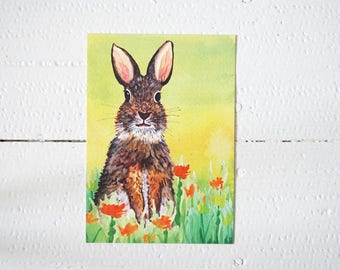 Lovely green greetingcard with rabbit (hare, animal, postcard)