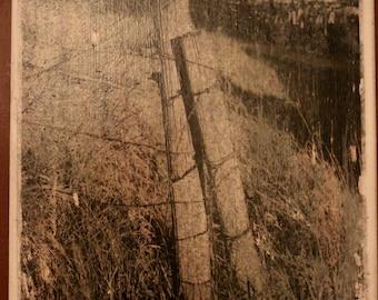 Rustic Fences Canvas Print