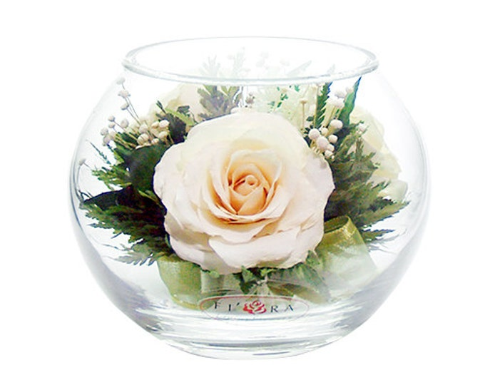 Lvory roses in a medium round vase