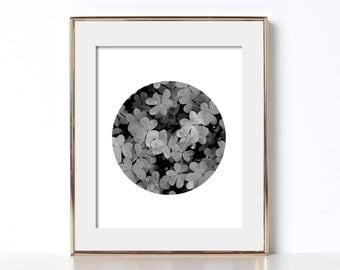 Black and White Clover Print Digital Download Printable Art Circle Art Photography Irish Design Ireland Print St Patricks Day Gift Lucky Pop