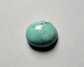 Sleeping Beauty Turquoise, Robins Egg