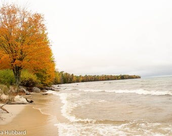 Autumn on Lakeshore Drive