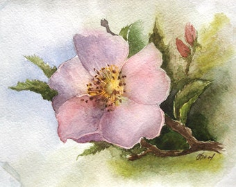 Wild rose, original watercolor, watercolor painting, wall art, flowers, picture, hand painted, rose art