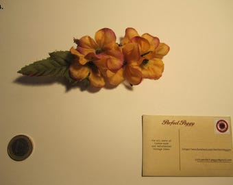 yellow hairflower (no4)