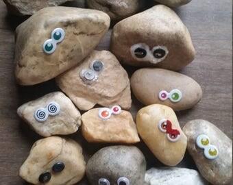 Pet Rocks - Crazy Eyes