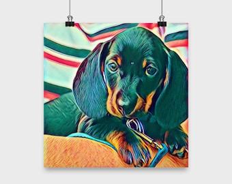 Dachshund, Doxie, Wiener, Puppy - Poster