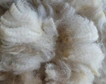 Raw, alpaca fiber,  home raised