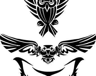 owl, owl, face of owl