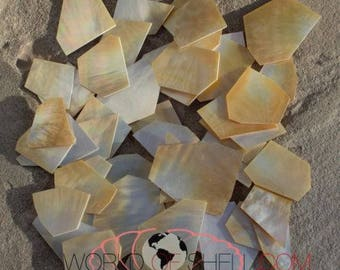 1 pound .040 thickness gold white Mother of Pearl for Inlay
