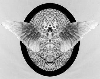 Psychopomp - rogue taxidermy digital art print