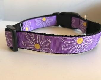 Purple Daisy Floral 1 inch Dog Collar