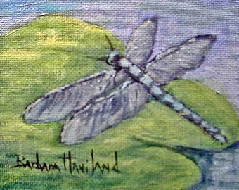 Dragonfly, oils on canvas panel. 3x4  Barbara Haviland, Barbsgarden
