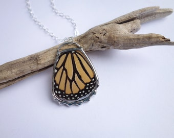 Full Monarch Wing - real bohemian butterfly necklace with a long chain READY TO SHIP