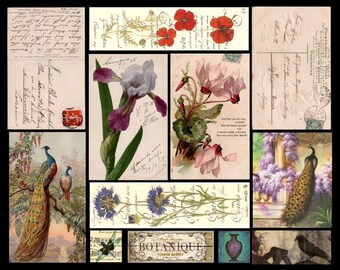 Peacocks on Postcards- Digital Collage Sheet - Instant Download