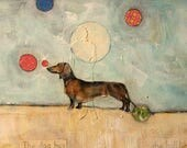 dachshund dog  juggling balls original  unique large painting