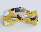 Bird Green Cat Bow Tie Collar - fun birds cotton cat bowtie, kitten bow tie, dog bow tie, adjustable collar - photo prop for pets - gift