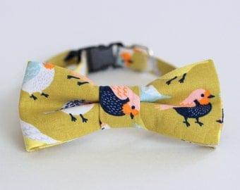 Bird Green Cat Bow Tie Collar - fun birds cotton cat bowtie, kitten bow tie, dog bow tie, adjustable collar - photo prop for pets - gift