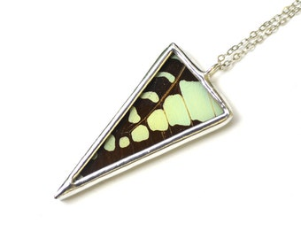 Spike Necklace. Graphium Antheus Butterfly Wing. Real Butterfly Wing Pendant. Geometric Triangle Pendant. Real Butterfly Wing Necklace