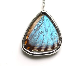 Real Butterfly Wing Necklace Blue Morpho Portis Hind Wing